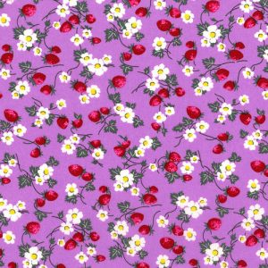 Everything but the kitchen sink - RJR fabrics - Berries and Blooms - 2965