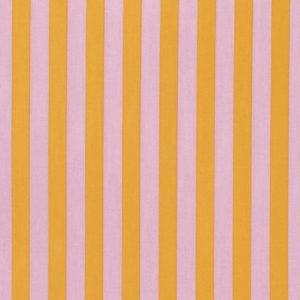 TULA PINK TABBY ROAD - TNT STRIPE - MARMALADE - PWTP069